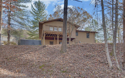 Hiawassee Single Family Home For Sale: 436 Lillian Drive