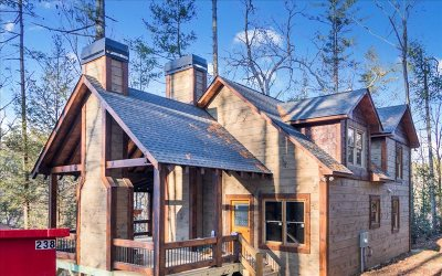 Ellijay Single Family Home For Sale: L3799 Gallery Court