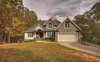 Ellijay Single Family Home For Sale: 758 Timber Ridge Ln