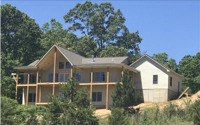 Ellijay Single Family Home For Sale: 271 Chinquapin Road