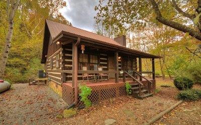 Ellijay Single Family Home For Sale: 28 Bear Lake Dr