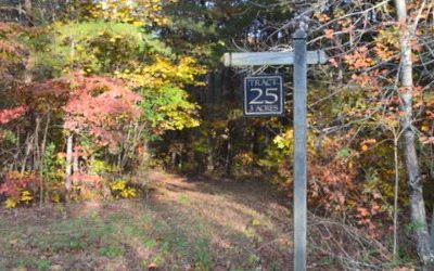Ellijay Residential Lots & Land For Sale: Lot25 Clear Creek Valley