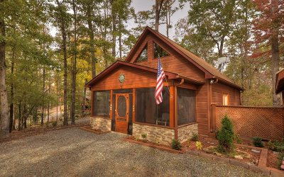 Ellijay Single Family Home For Sale: 1175 Nexus Drive