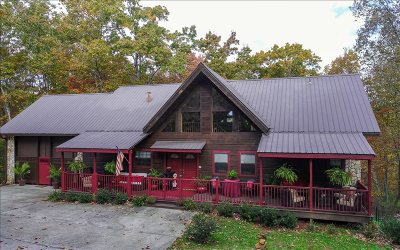 Mineral Bluff Single Family Home For Sale: 391 Stuart Mountain Rd