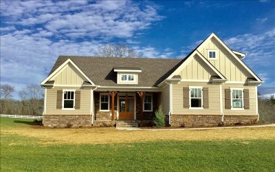 Blairsville Single Family Home For Sale: 17 Green Way