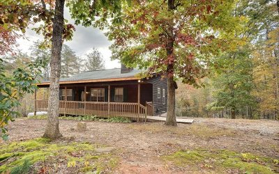 Blairsville Single Family Home For Sale: 785 Rizzitello Lane