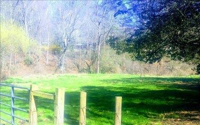 Ellijay Residential Lots & Land For Sale: Mt Zion Road
