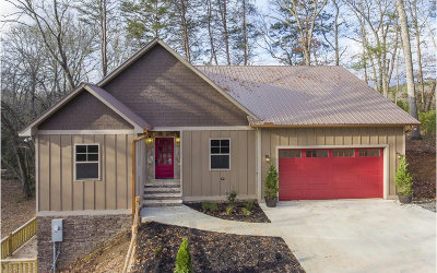 Mineral Bluff Single Family Home For Sale: 526 Farmer Circle