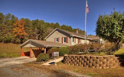 Ellijay Single Family Home For Sale: 1335 Sam Hill Road