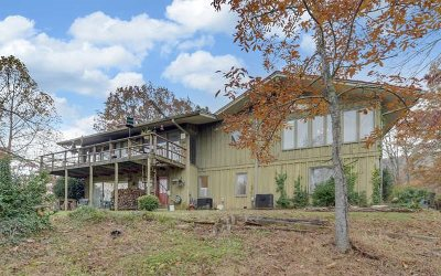 Murphy Single Family Home For Sale: 201 Candy Mountain Road