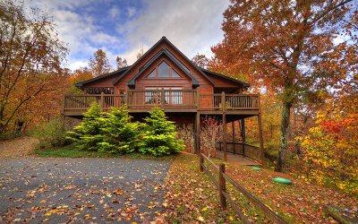 Ellijay Single Family Home For Sale: 958 Bryant Farm Lane