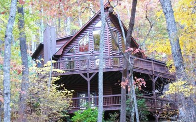 Cherokee County Single Family Home For Sale: 91 Little Branch Trail