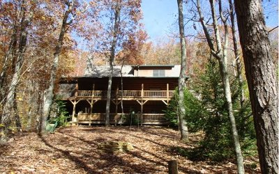 Cherokee County Single Family Home For Sale: 9 Upland Trail