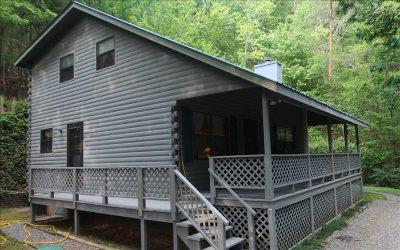 Ellijay Single Family Home For Sale: 136 Goldmine Drive