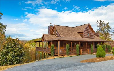 Blairsville Single Family Home For Sale: 693 Madeline