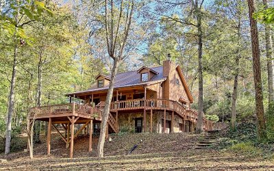 Hiawassee Single Family Home For Sale: 1999 Tyler Lane