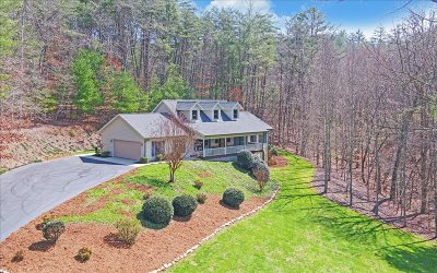 Cherokee County Single Family Home For Sale: 315 Poor House Mountain
