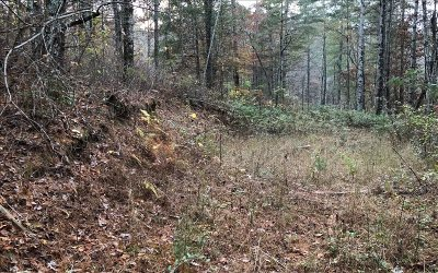 Ellijay Residential Lots & Land For Sale: Tr A Seth Hyatt