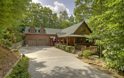 Blue Ridge Single Family Home For Sale: 214 Down Under Road