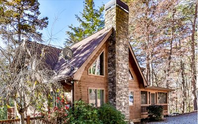Ellijay Single Family Home For Sale: 210 Pocaset Dr.