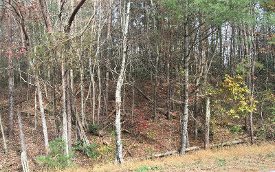 Ellijay Residential Lots & Land For Sale: Clear Creek Road
