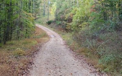 Ellijay Residential Lots & Land For Sale: 266 Almond Circle