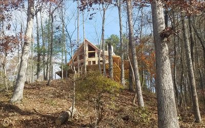 Mineral Bluff Single Family Home For Sale: Lt 2 Fish Camp Way