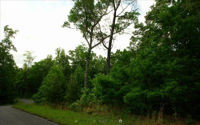 Fannin County Residential Lots & Land For Sale: 46 Ralston Gap 46