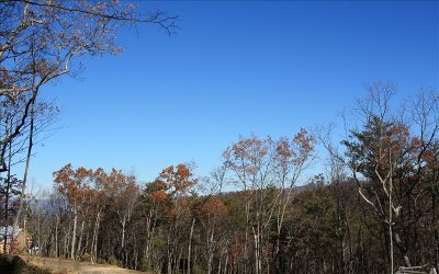 Ellijay Residential Lots & Land For Sale: Lt268 Stone Cliff Drive