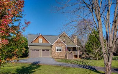 Ellijay Single Family Home For Sale: 312 Cartecay River Run