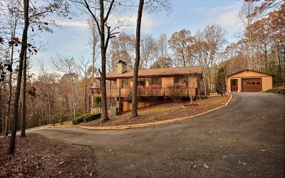 Blairsville Single Family Home For Sale: 236 Honeysuckle Drive