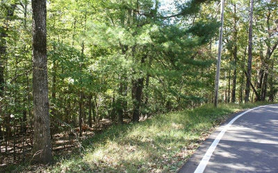 Ellijay Residential Lots & Land For Sale: Lt470 Villa Dr
