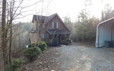 Hiawassee Single Family Home For Sale: 2115 Ivy Mountain Road