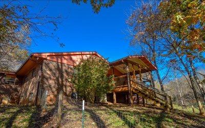 Hayesville Single Family Home For Sale: 60 Dick Jones