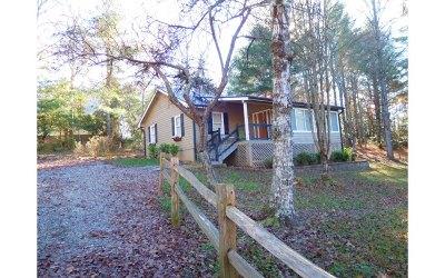 Blairsville Single Family Home For Sale: 991 Gibbs Road