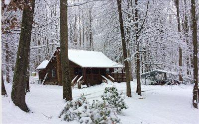 Blairsville Single Family Home For Sale: 100 Pea Ridge
