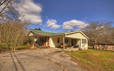 Mineral Bluff Single Family Home For Sale: 2287 Mineral Bluff Hwy