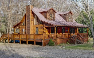 Murphy Single Family Home For Sale: 176 Mill Hollow Road