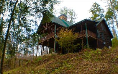 Ellijay Single Family Home For Sale: 546 Roaring Forks Lane