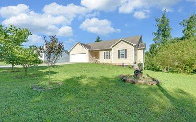 Ellijay Single Family Home For Sale: 1413 Roberts Ridge Road