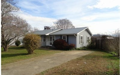 Hayesville Single Family Home For Sale: 88 Tusquittee Street