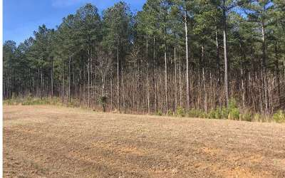 Blairsville Residential Lots & Land For Sale: Lot42 Thirteen Hundred