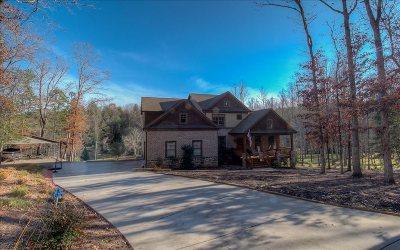 Blairsville Single Family Home For Sale: 264 Paradise Lane