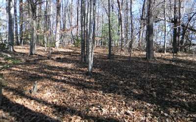 Hayesville Residential Lots & Land For Sale: Ashe Knob Rd