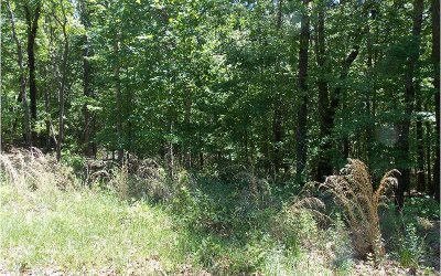 Ellijay Residential Lots & Land For Sale: Camp Branch