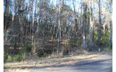 Ellijay Residential Lots & Land For Sale: Lt556 Satsuma Ct