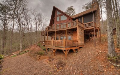 Blue Ridge Single Family Home For Sale: 44 Birdseye Court