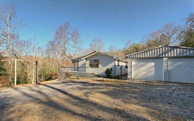 Blairsville Single Family Home For Sale: 341 Pauline Lane