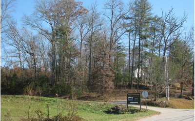 Young Harris Residential Lots & Land For Sale: Tr. 2 Highway 66