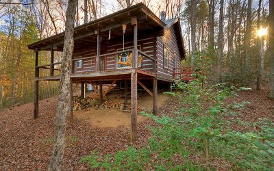 Blue Ridge Single Family Home For Sale: 174 Icy Lane